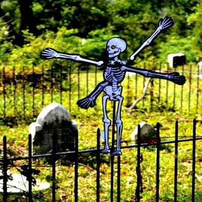 20 - 22 in WhirliGig Spinner – Skeleton
